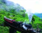 туры  Туры на Шри-Ланку от УмноТур