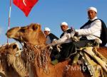 туры  Туры в Тунис от УмноТур