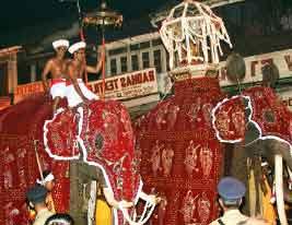 фестивали на шри-ланке